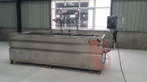 Water Transfer Printing Machine Semi-Automatic Type Lyh-Wtpm051-1 with Dipping Arm pictures & photos