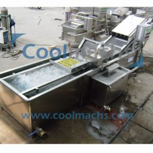 Industrial Vegetable and Fruit Bubble Brush Roller Washing Machine, Washer pictures & photos
