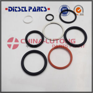 Quality Common Rail C7 Injector Repair Kits Gasket Kits O Ring for Sale pictures & photos