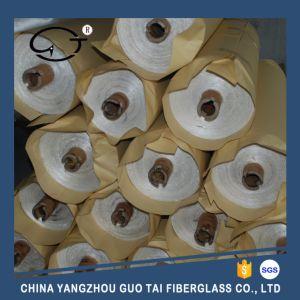 Fiberglass Mica Cloth pictures & photos