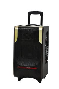 10 Inch Portable Trolly Multimedia Bluetooth Home Theater Speaker pictures & photos