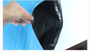 Plastic Color Postal Packing Bag with Sliver Adhesive Seal pictures & photos