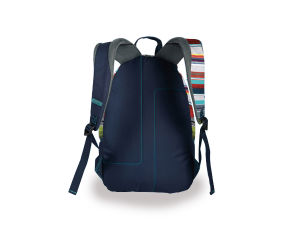 Designer Backpacks for Men (LJ-131006) pictures & photos