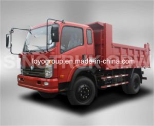 China Brand Cdw 4X2 Dump Truck for Sale pictures & photos