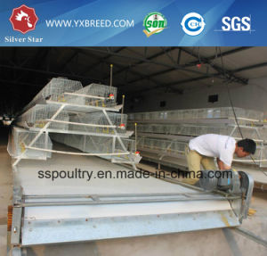 Battery Chicken Cage / Egg Chicken Cage / Automatic Chicken Layer Cage pictures & photos