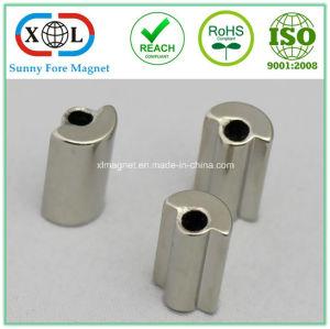 Sector Shape Permanent Magnet pictures & photos