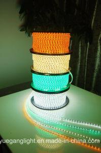 SMD 3528 Strip 60 Light/M Low Voltage Decorative Light Christmas Lamp pictures & photos