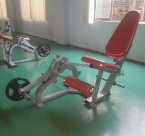 CE Certificated Nautilus Fitness Machine / Leg Extension (SW-2011) pictures & photos