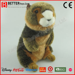 En71 Realistic Stuffed Plush Toy Marmot pictures & photos