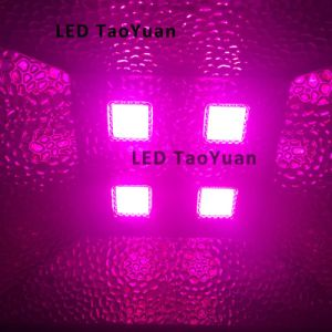 LED Grow Light 380-840nm 200W pictures & photos
