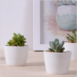Decorative Mini White Ceramic Flower Pots Round pictures & photos