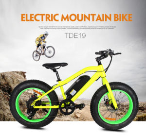 Tde19 Electric Bicycle China for Child pictures & photos