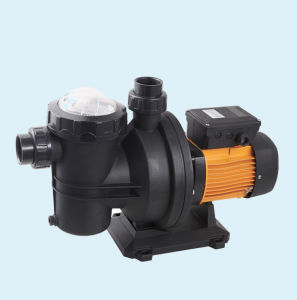 48V-72V DC Swimming Pool Pump, Solar Irrigation Pump pictures & photos