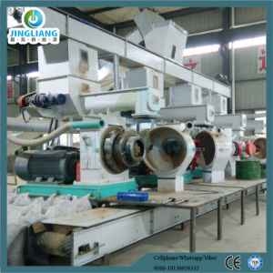 5ton Per Hour Rice Husk Pellet Line Wood Pellet Line pictures & photos