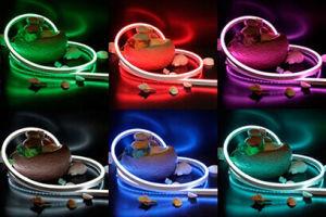 Super Bright RGB LED Neon Flex Light for Building Outline Decoration pictures & photos