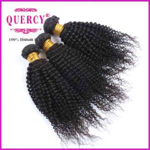 Best Selling Products Kinky Curly Brazilian Virgin Hair Weave pictures & photos