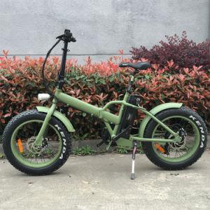 20′ Popular Folding Top Quality Fat Electric Bike