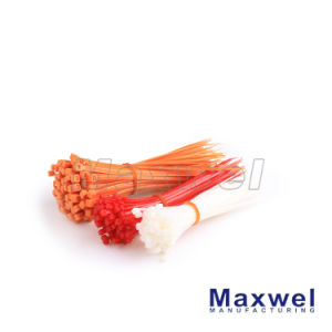 Self-Locking Nylon Plastic Cable Tie pictures & photos