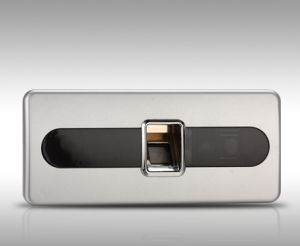 Fingerprint Lock (SJZ8007-1M) pictures & photos