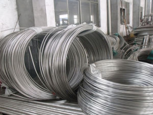 ASTM Stainless Steel Coil Tube for Beverage Cooling pictures & photos