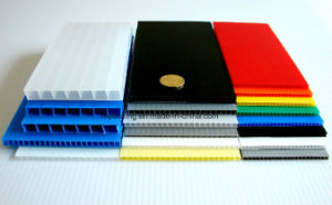 PP Recycled Corrugated Plastic Sheet, Twin Wall PP Sheet pictures & photos