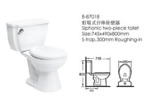 Washdown One-Pieces Bathroom Toilet (87018) pictures & photos