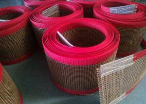 PTFE Mesh Belt, PTFE Mesh Tape pictures & photos