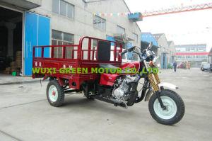 250cc/200cc/150cc Three Wheel Tricycle (GM200ZH-B1)