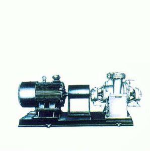 Hot Sale Oil Pump, Horizontal Pump, Pump pictures & photos