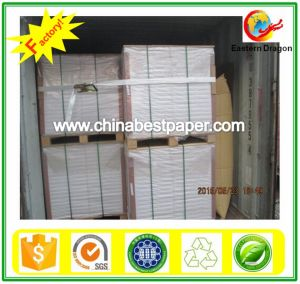 Uncoated 80g Offset Roll Paper pictures & photos