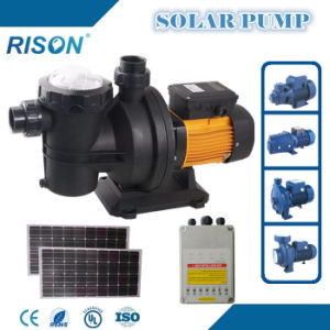 Solar Powered Swimming Pool Pump (5 years Warranty) pictures & photos