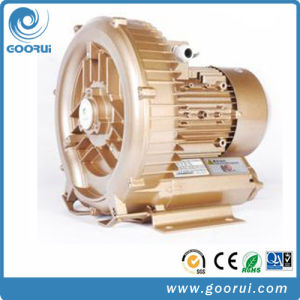 Three Phase Ring Blower High Air Regenerative Aeration High Pressure Blower Vacuum Pump pictures & photos