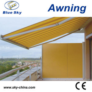 Metal Retractable Polyester Screen Awning (B700) pictures & photos