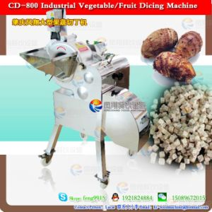 Tuber Fleeceflower Root Dicing Machine pictures & photos