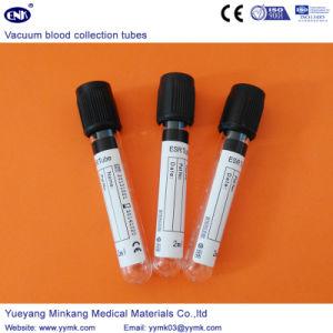 Vacuum Blood Collection Tubes ESR Tube (ENK-CXG-040) pictures & photos
