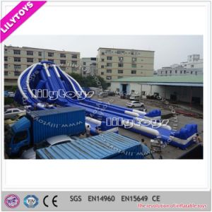 Giant Inflatable Trippo Slide for Amuse Toys pictures & photos