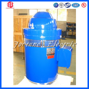Shanghai 460V Three Phase Hollow Shaft Motor 300HP pictures & photos