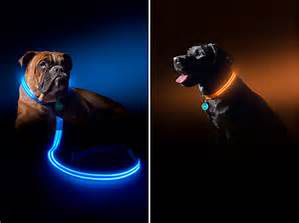 High Brightness Retractable LED Dog Leash pictures & photos