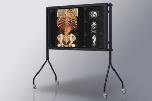 (JUSHA-SUPER70T-AIO) 70 Inch Grayscale and Color Auto-Calibration Group Consultation Medical Display, Large Dimension pictures & photos