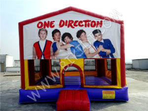 Simply Colorful Inflatable Combo/Inflatable Bouner/Inflatable Bouncy with Artpanel pictures & photos