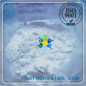 Oral Anabolic Nolvadex Steroid Estrogen Pills Safe Tamoxifen Citrate Tablets pictures & photos