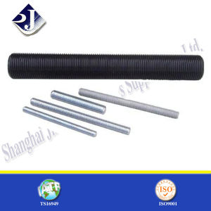 Black Color Finish Ground Screws pictures & photos