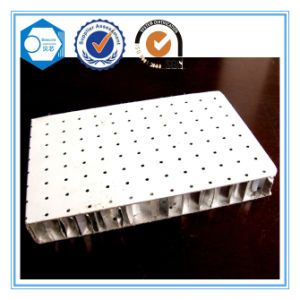 Aluminum Honeycomb Panel pictures & photos