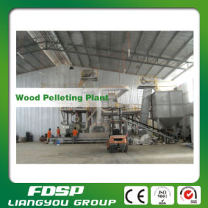 CE Approved 1tph Wood Pellet Production Line with High Efficiency pictures & photos