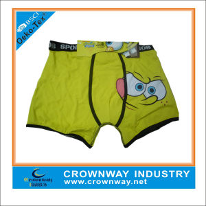 Cotton Spandex Boys Underpants Boxer Shorts/ Briefs with Cartoon Printing pictures & photos
