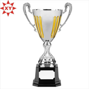 Promotional Custom Award Trophy Souvenir pictures & photos