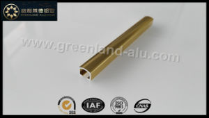 Glt149 Aluminum Listello (Narrow 10mm Gold Polished) pictures & photos