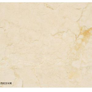 Spain Imported Beige Marble Slab Creamery pictures & photos