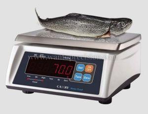 Digital Weighing Electronic Camry Plastic IP68 Waterproof Scale (WT-ZE21)