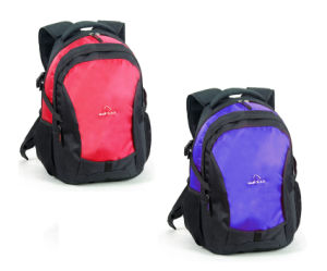 Cool Rucksack Backpacks for Men and Boys (BBP10547) pictures & photos